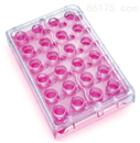 Millicell 24孔細胞培養扳
