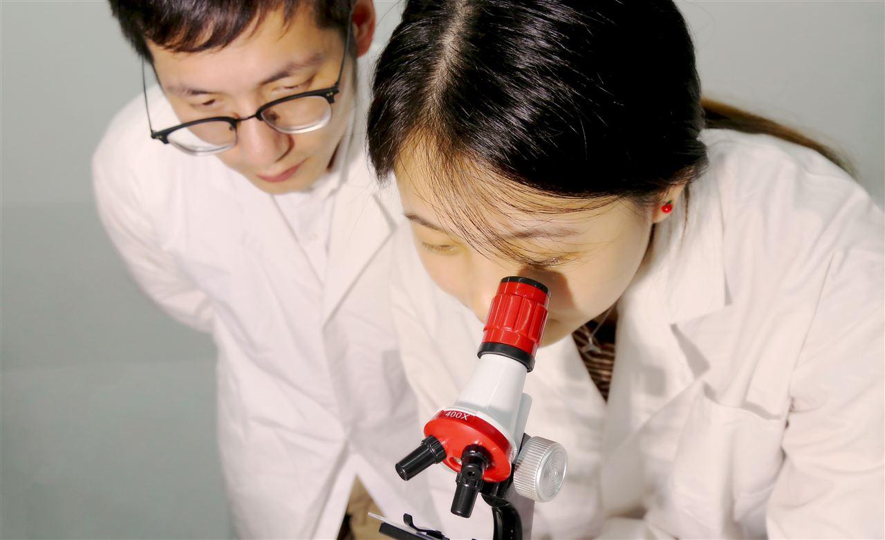 中科进出口中标地质大学透射电子显微镜采购