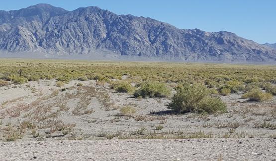防治土地荒漠化 遥感监测来帮忙